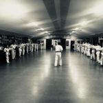 Karate tauranga