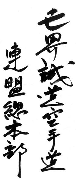 tauranga karate - seido